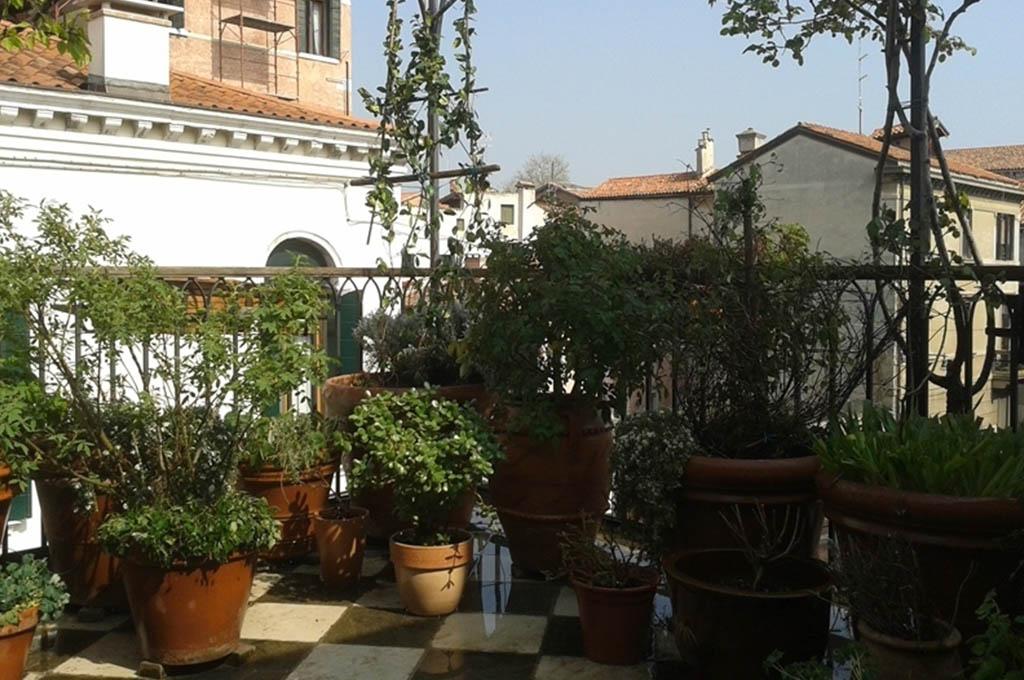 Giardini pensili su terrazze a Venezia centro storico | Cristian ...